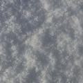 写真: 表面霜_壁紙用