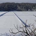 雪の水田の朝
