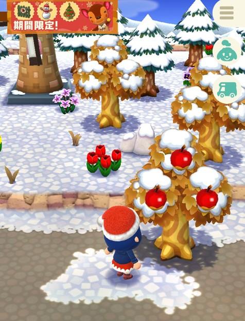 森が雪景色に?