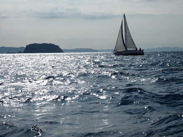 浮島とヨット