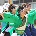 Photos: ど祭2017 飃17