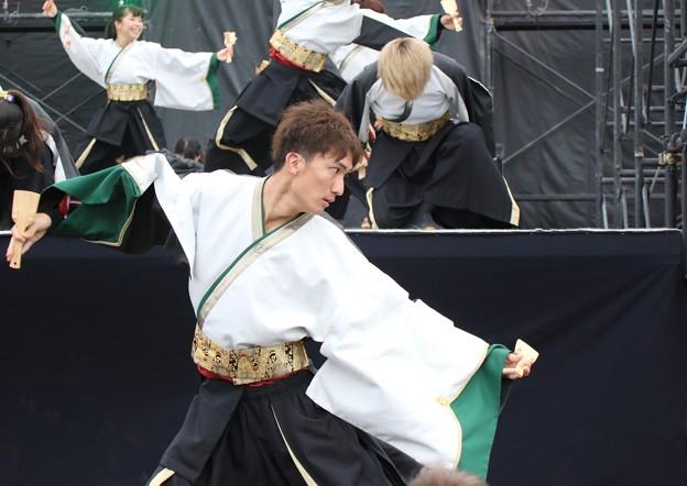 こいや2017 鳳遙恋16