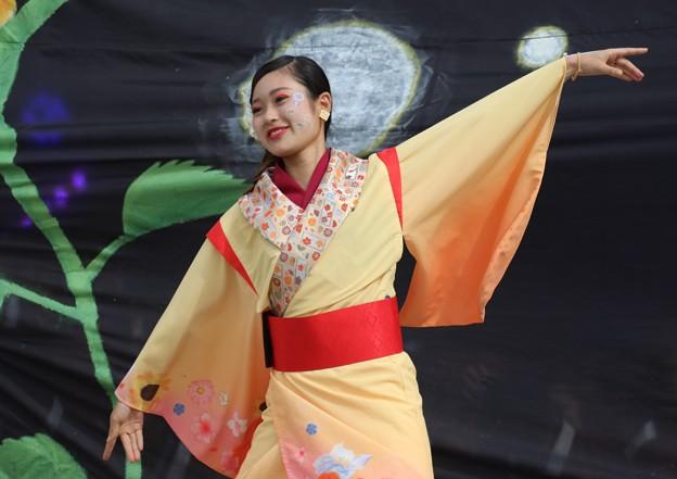 こいや2017 仏喜踊14