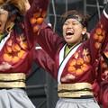 写真: こいや2017 仏喜踊17