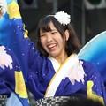 Photos: こいや2017 フィナーレ よさ朗 13