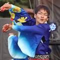 Photos: こいや2017 フィナーレ よさ朗 25