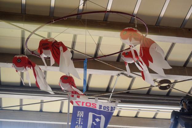 柳井駅 金魚ちょうちん