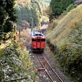 写真: 播但線の秋