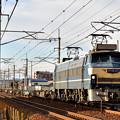 EF65 27
