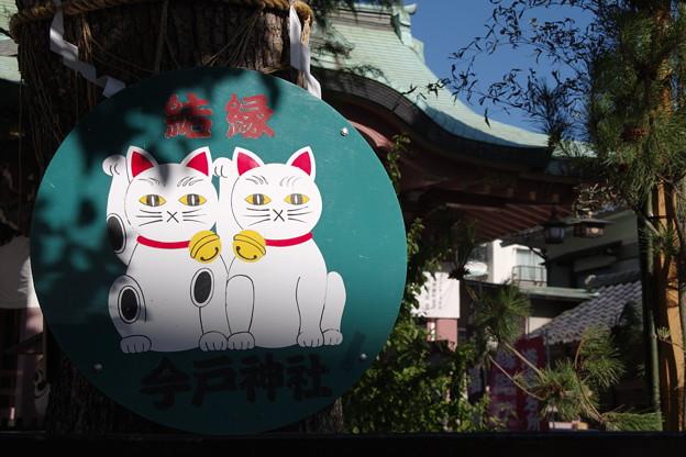 写真: 招き猫(その2)