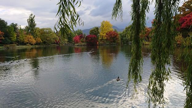 2017北海道秋景