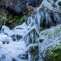 Photos: 氷柱も歓迎