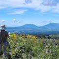 写真: ヒゴタイ公園から見る阿蘇五岳