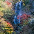 五ヶ瀬の白滝