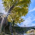 写真: 笠松橋