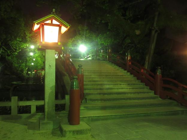 夜の太宰府天満宮 5