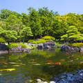 写真: 姫路城西御屋敷跡庭園 好古園