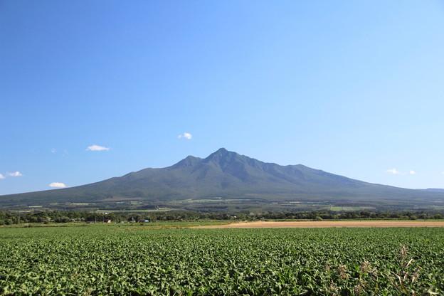 すっきり青空と斜里岳