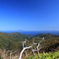 写真: 知床横断道路より国後島を望む