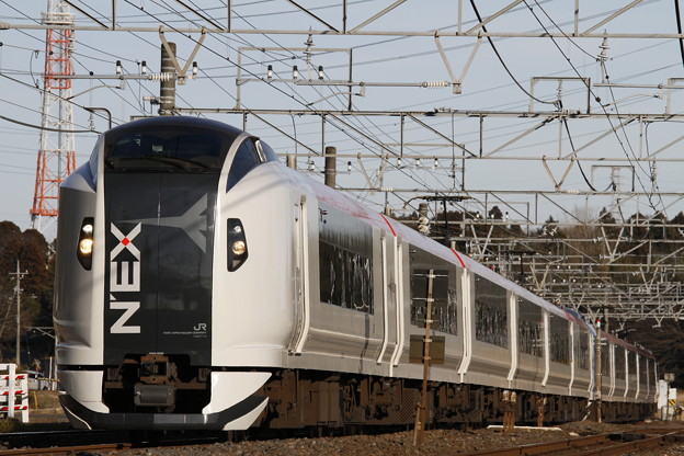 Photos: _MG_3805 E259系 成田エクスプレス