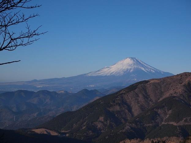 富士見台より (1)