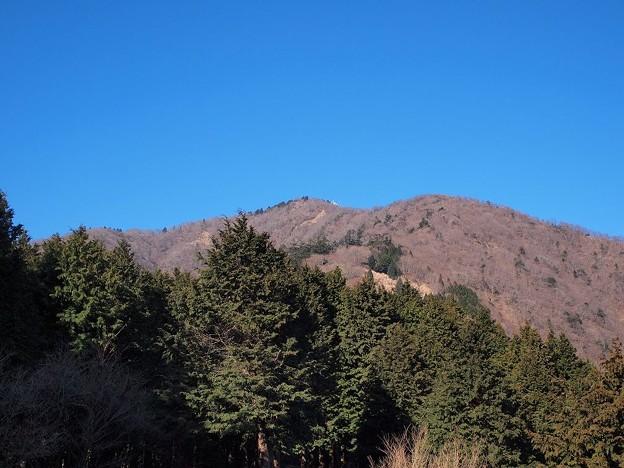 見晴台より大山 (1)