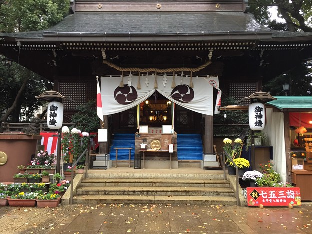11月_ 太子堂八幡神社 1