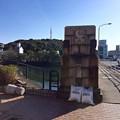 写真: 比治山橋 広島市中区鶴見町 - 南区比治山本町