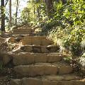 Photos: 石段