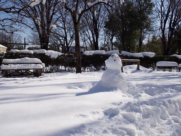 旧加藤家前庭の雪だるま