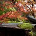 写真: 廃屋と紅葉