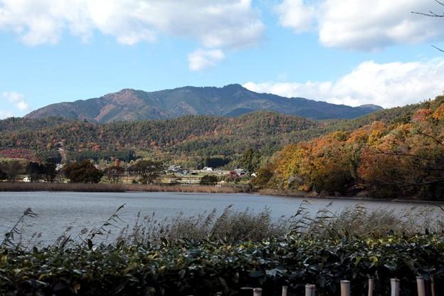 北嵯峨・広沢池畔