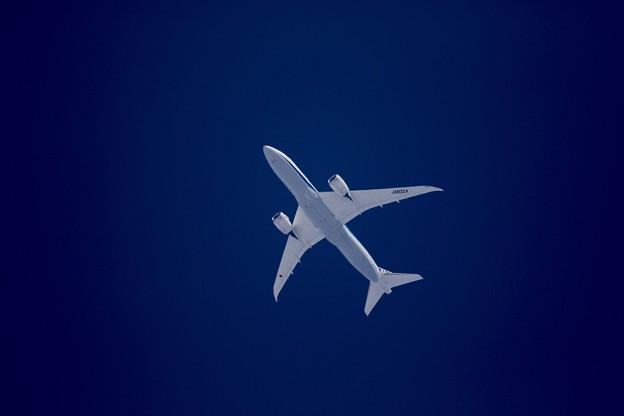 写真: 上空のドリームライナー