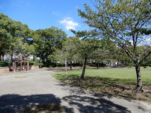 桜之宮公園(蕪村公園) (2)