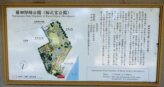 藤田邸跡公園 (1)