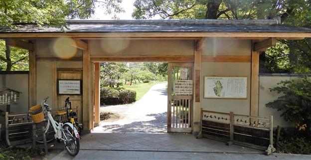 藤田邸跡公園 (2)