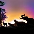 写真: アフリカ・オルタナティブ