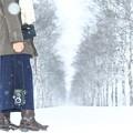 雪中の表現者