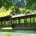 Photos: 屋根付き橋