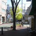 兵庫県芦屋市の阪神打出駅北側駅前。木の向こうにある銀色の物体が白ポストである。(2014年)