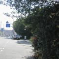 兵庫県三木市のジャスコ前の白ポストを路上から見る。(2014年)