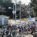 兵庫県三木市の神鉄広野ゴルフ場前駅前の白ポストを乗場から見下ろす。(2014年)