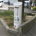 兵庫県宝塚市のコープ中山台店前の白ポスト、向かって右。(2015年)