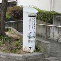 兵庫県宝塚市のコープ中山台店前の白ポスト、向かって左。(2015年)