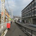 Photos: 春木