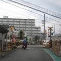 Photos: 鳥取ノ荘1号