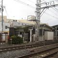 Photos: 忠岡