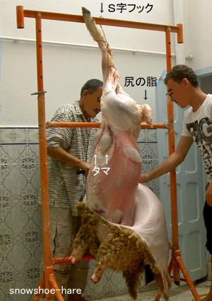 羊は吊るされ、処理される