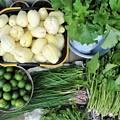 Photos: 菜園の収穫