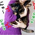 Photos: 逃げろ~